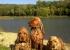 Berris s holkama u rybníka