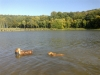 Berris s Ambrou ve vodě