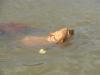 Berris poprvé ve vodě.