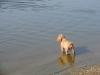 Kira na pláži