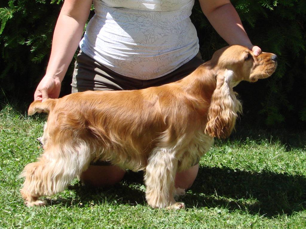 Doris Deermount 1 rok