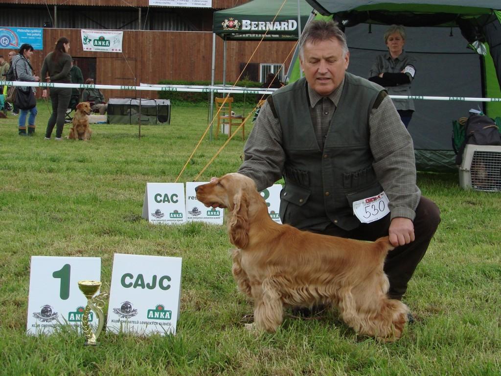 Caesar Deermount, V1, CAJC (SV Humpolec)