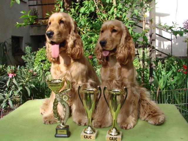 Caesar a Cedra se svými poháry